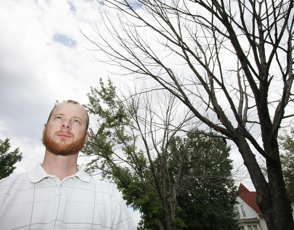 Photo - Ryan Ochsner, urban forestry coordinator for the city of Edmond, shows two silver maples, one that is completely dead and another with about 80 percent of the canopy dead. Many trees have been weakened by the drought in 2011. Photo by David McDaniel, The Oklahoman