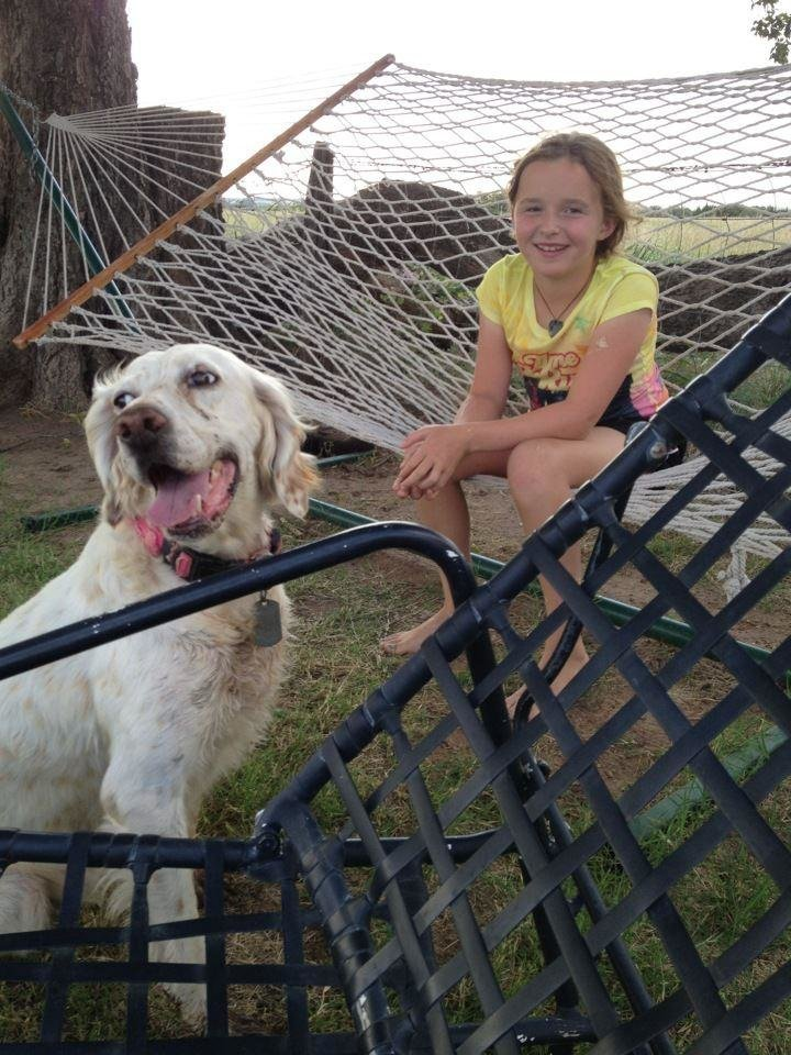 Photo - This July 2014 photo provided by Dr. Danel Grimmett, shows Willow Grimmett, 10, with her agility dog, Emmy, at their home in Edmund, Okla. Willow spent the summer outdoors with the family's English Setter, designing and running obstacle courses. For millions of dogs across the country, summer is gone and so are their best buddies. Most dogs object for a while but eventually adjust to the new hours.  But millions of others will feel abandoned, panicky, sad and unable to cope as they look for ways to lash out. (AP Photo/Danel Grimmett)