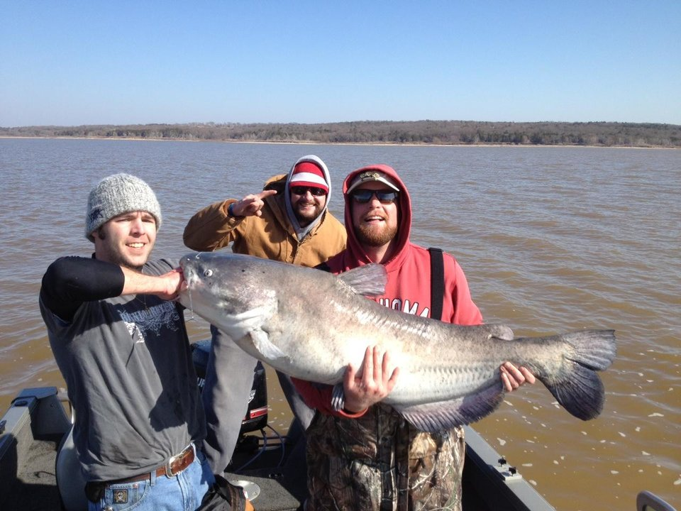 Photo -  James Chapman of Blanchard, Jacob Pressley of Arlington, Texas and Andy Wilshire of Edmond landed this 86-pound blue catfish on a jug line Saturday at Lake Texoma.