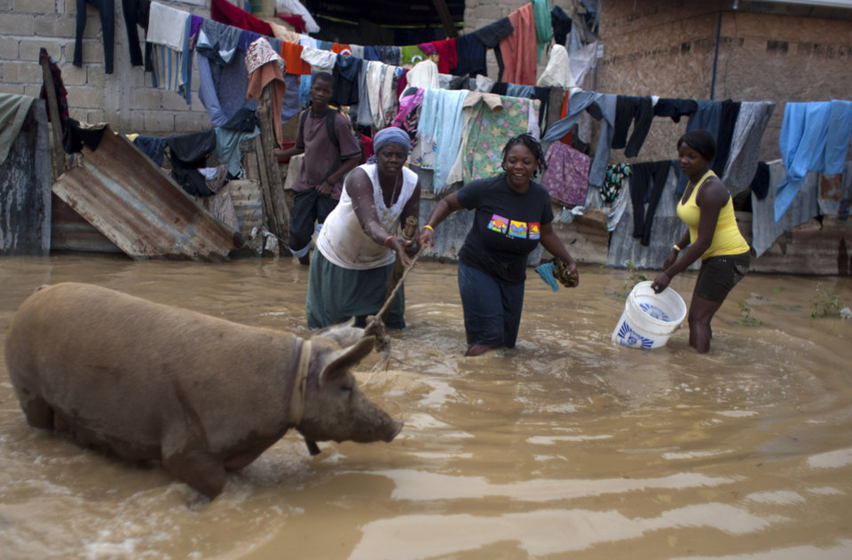 Photo - Residents rope a pig on a flooded street after the passing of Tropical Storm Isaac in Port-au-Prince, Haiti, Sunday Aug. 26, 2012. The death toll in Haiti from Tropical Storm Isaac has climbed to seven after an initial report of four deaths, the Haitian government said Sunday. (AP Photo/Dieu Nalio Chery) ORG XMIT: PAP121
