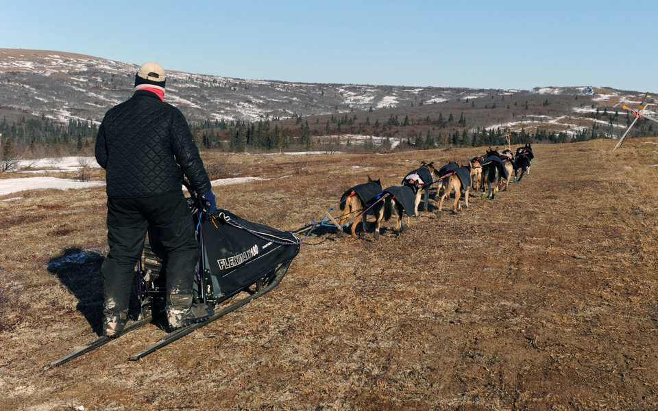 Photo - Iditarod musher Jessie Royer, from Darby, Mont., mushes over bare tundra on the Blueberry Hills out of the Unalakleet checkpoint in Unalakleet, Alaska during the 2014 Iditarod Trail Sled Dog Race on Sunday, March 9, 2014. (AP Photo/The Anchorage Daily News, Bob Hallinen)