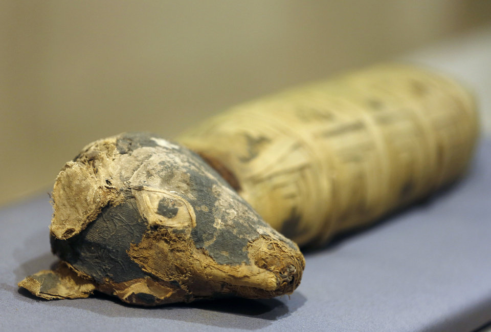 Photo - In this March 20, 2014 photo, a Dog Mummy is displayed as part of the exhibit