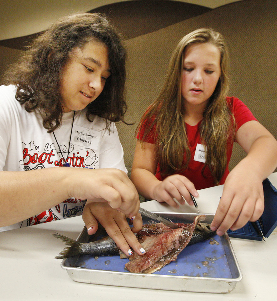 Photo - Clarissa Grape, 13, from Guthrie, and Dani Holle, 12, from Oklahoma City, dissect a herring in a recent summer camp at the Oklahoma City Zoo.  Photo by Paul B. Southerland, The Oklahoman  PAUL B. SOUTHERLAND