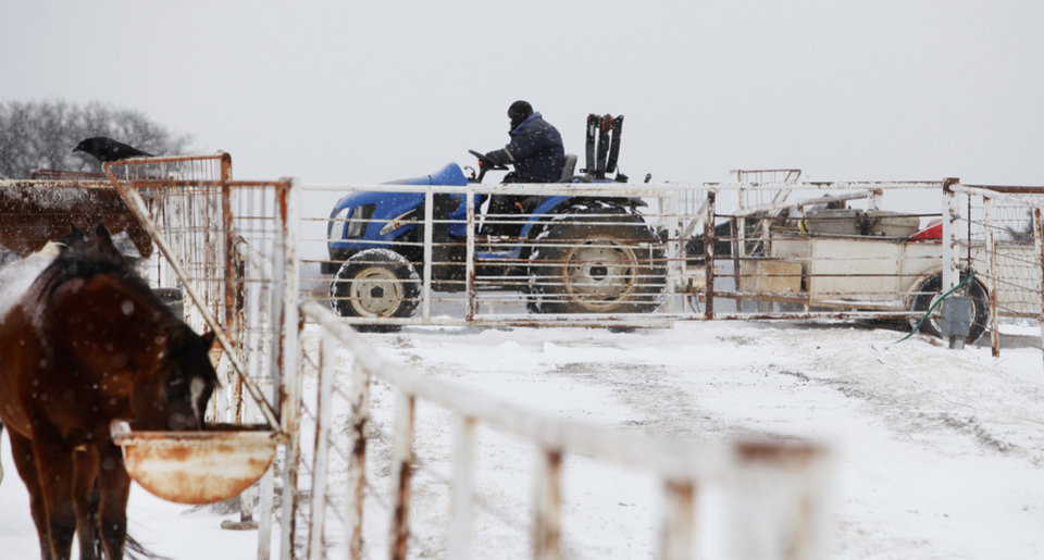 Photo - A farmer feeds horses in Logan County , February  9 , 2011. Photo by Steve Gooch, The Oklahoman