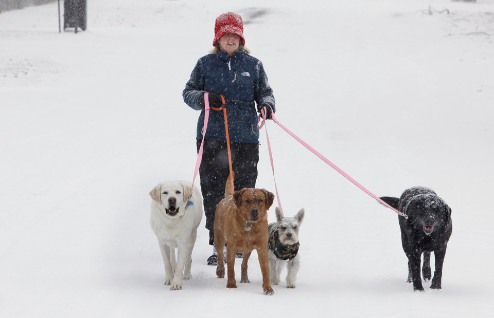 Photo - Jeanie Coldwell, Okla. City, walking the family dogs in the snow in the 3800 block of NW 44 Street in Oklahoma City Friday, Jan. 29, 2010. Photo by Paul B. Southerland, The Oklahoman ORG XMIT: KOD