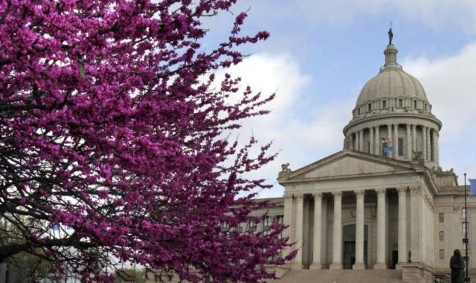 Photo -  The redbud trees are in full bloom on the grounds of the state Capitol in Oklahoma City, OK, Saturday, March 17, 2012,  By Paul Hellstern, The Oklahoman