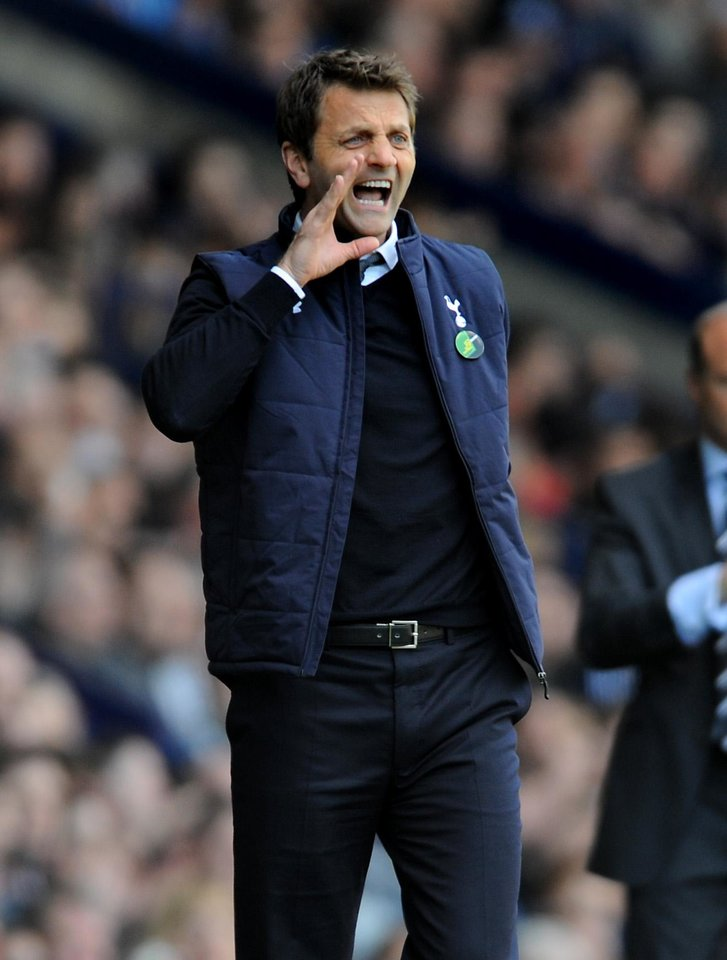 Photo - Tottenham Hotspur manager Tim Sherwood shouts instructions to his players during the English Premier League soccer match between West Bromwich Albion and Tottenham Hotspur at The Hawthorns Stadium in West Bromwich, England, Saturday, April 12, 2014.  (AP Photo/Rui Vieira)