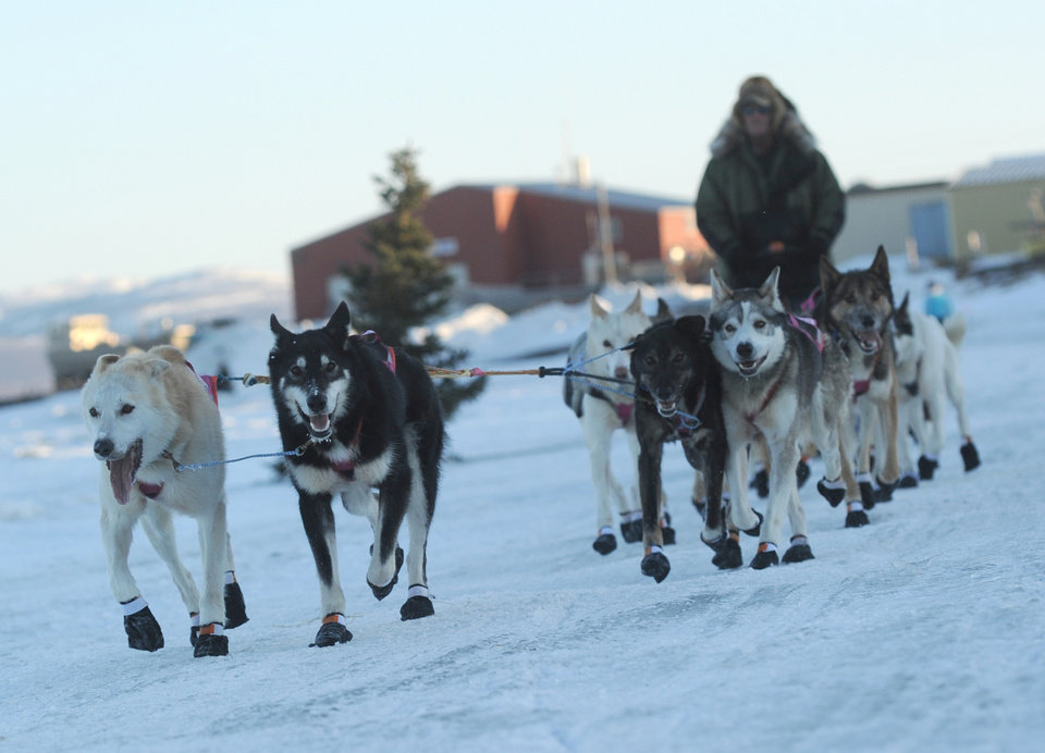 Photo - Sonny Lindner is third musher into the Unalakleet checkpoint at 6:09PM during the 2014 Iditarod Trail Sled Dog Race on Saturday, March 8, 2014. (AP Photo/The Anchorage Daily News, Bob Hallinen)
