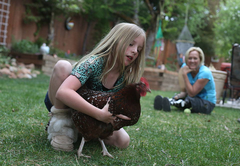 Photo -       Lily Speckman plays with one of the family's chickens with her mother, Lisa, in Salt Lake City on Monday, May 5, 2014.