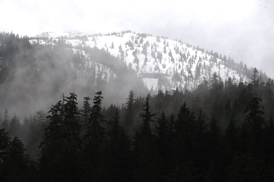Trees and fog surround a mountain in Southeast Alaska, Friday, June 8, 2012.  Photo by Sarah Phipps, The Oklahoman