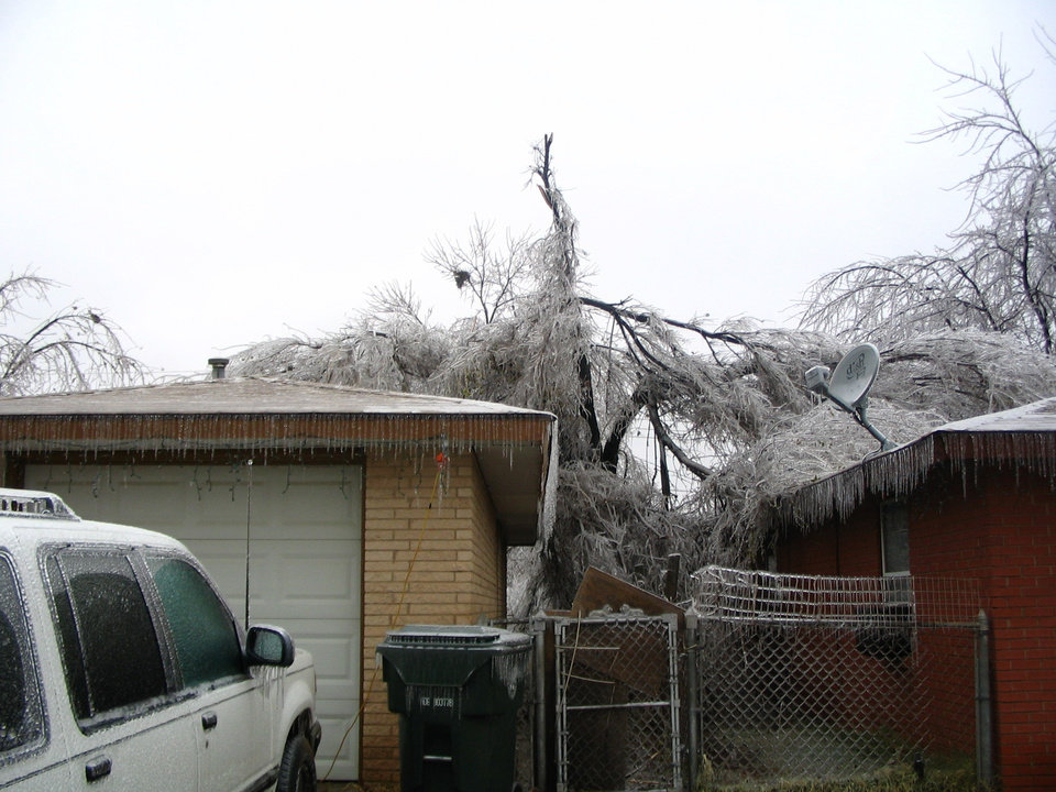Fallen tree from Ice Storm 2007<br/><b>Community Photo By:</b> Maria Wheatley<br/><b>Submitted By:</b> Maria, Midwest City