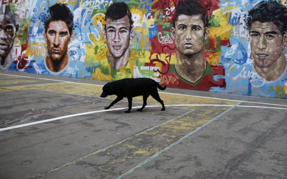 Photo - A dog walks on a concrete soccer pitch in front of a wall decorated with a mural depicting soccer players, Mario Balotelli of Italy, from left to right, Lionel Messi of Argentina, Neymar of Brazil, Cristiano Ronaldo of Portugal and Luis Suarez of Uruguay, in the Tavares Bastos favela, in Rio de Janeiro, Brazil, Friday, May 23, 2014. 32 national teams will compete in the upcoming World Cup, with Sao Paulo hosting the opening ceremony and kick-off match between Brazil and Croatia on June 12. (AP Photo/Hassan Ammar)