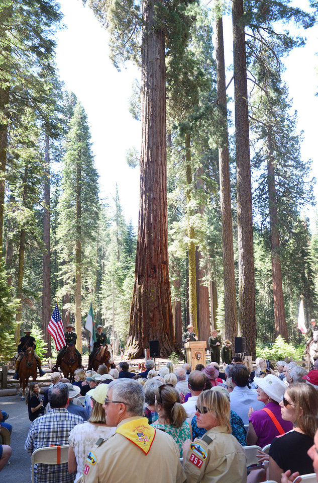 Photo - A giant sequoia serves as a backdrop for the Yosemite Grant sesquicentennial ceremony at Yosemite National Park's Mariposa Grove Monday, June 30, 2014. On June 30, 1864, President Abraham Lincoln signed the Yosemite Land Grant which eventually led to the national parks system. (AP Photo/The Fresno Bee, Craig Kohlruss)