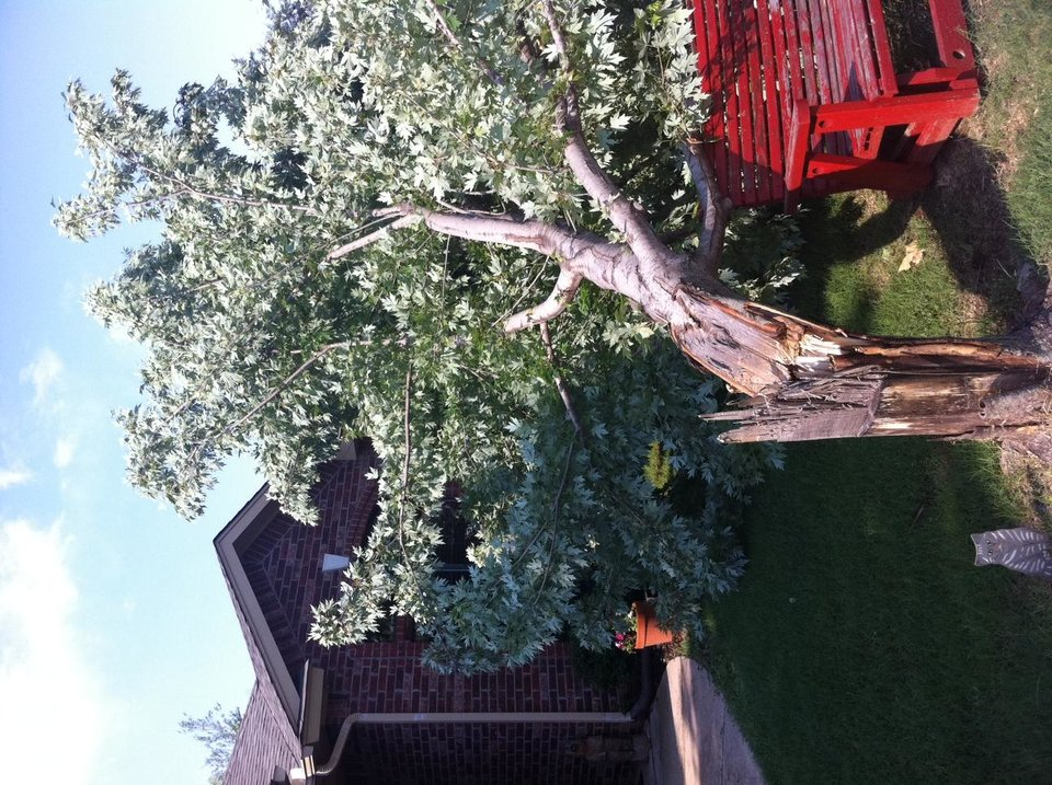 Norman storm damage 6/30/12
