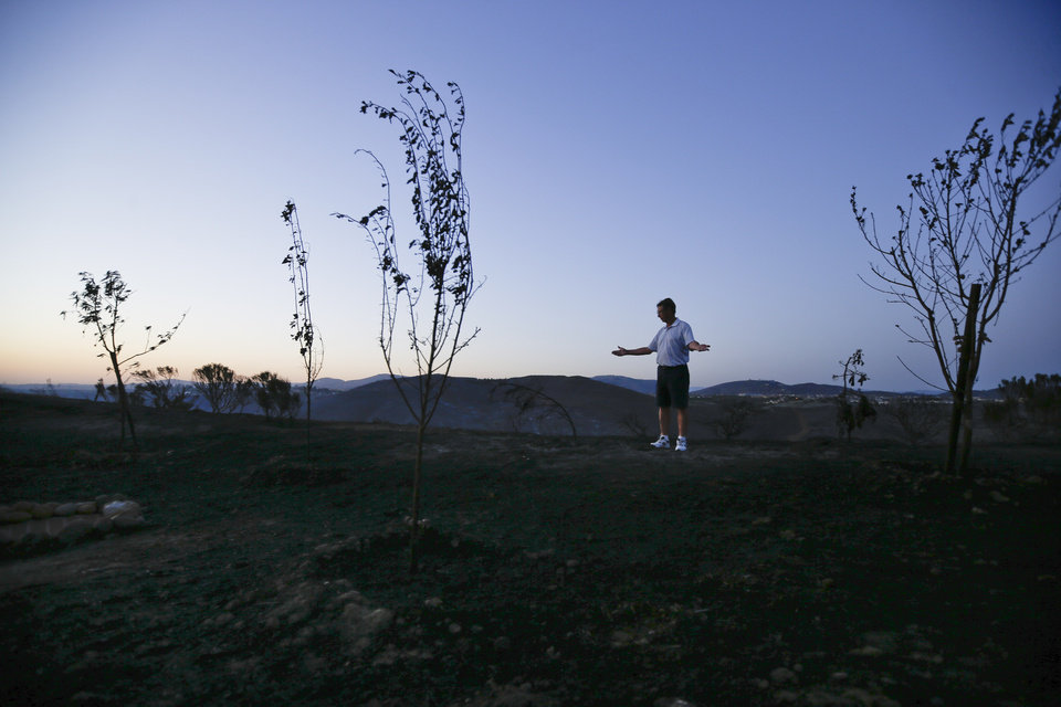 Photo - Jack Elkins gestures as he looks at his backyard fruit trees, ravaged by wildfire  Tuesday, May 13, 2014, in San Diego. Wildfires pushed by gusty winds chewed through canyons parched by California's drought, prompting evacuation orders for more than 20,000 homes on the outskirts of San Diego and another 1,200 homes and businesses in Santa Barbara County 250 miles to the north. (AP Photo)