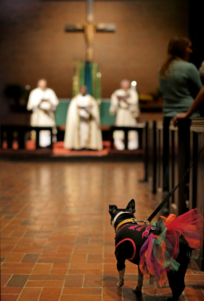 Michele Riddle's dog, Sage, listens to a sermon during a service in Celebration of God's Creations with the Blessing of the Animals at St. Augustine of Canterbury Episcopal Church in Oklahoma City. Sunday, Oct. 7, 2012. Photo by Sarah Phipps, The Oklahoman