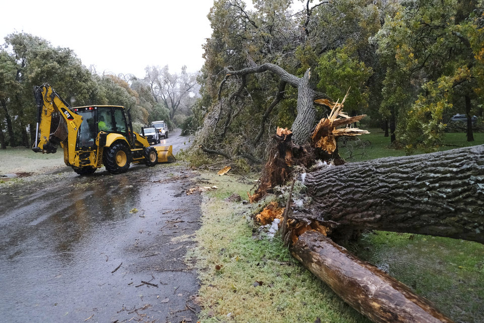 Photo - Edmond Field Services crew works to unblock Persimmon Creek Dr in Edmond after a large tree fell blocking it from the ice storm that hit the Oklahoma City metro area Tuesday, October 27, 2020. [Doug Hoke/The Oklahoman]