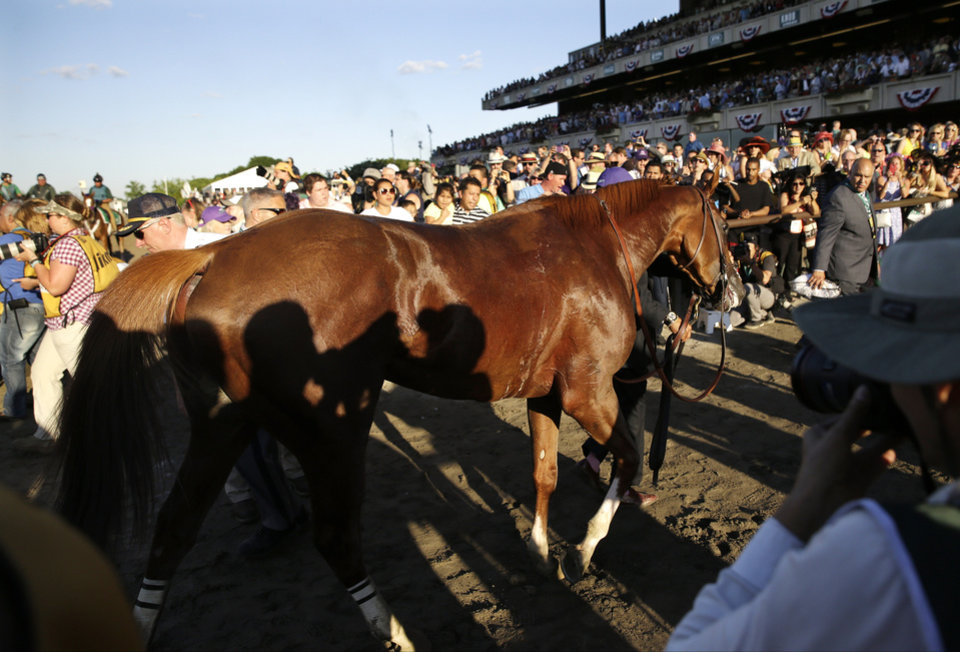 Photo - California Chrome is lead off the track after finishing fourth in the Belmont Stakes horse race, Saturday, June 7, 2014, in Elmont, N.Y. (AP Photo/Seth Wenig)