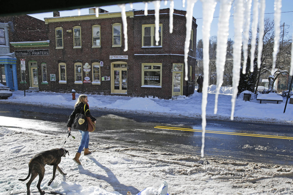 Photo - A women walks with her dog past icicles hanging from a store awning Wednesday, Jan. 22, 2014, in Philadelphia.  A winter storm stretched from Kentucky to New England and hit hardest along the heavily populated Interstate 95 corridor between Philadelphia and Boston.   (AP Photo/Matt Rourke)