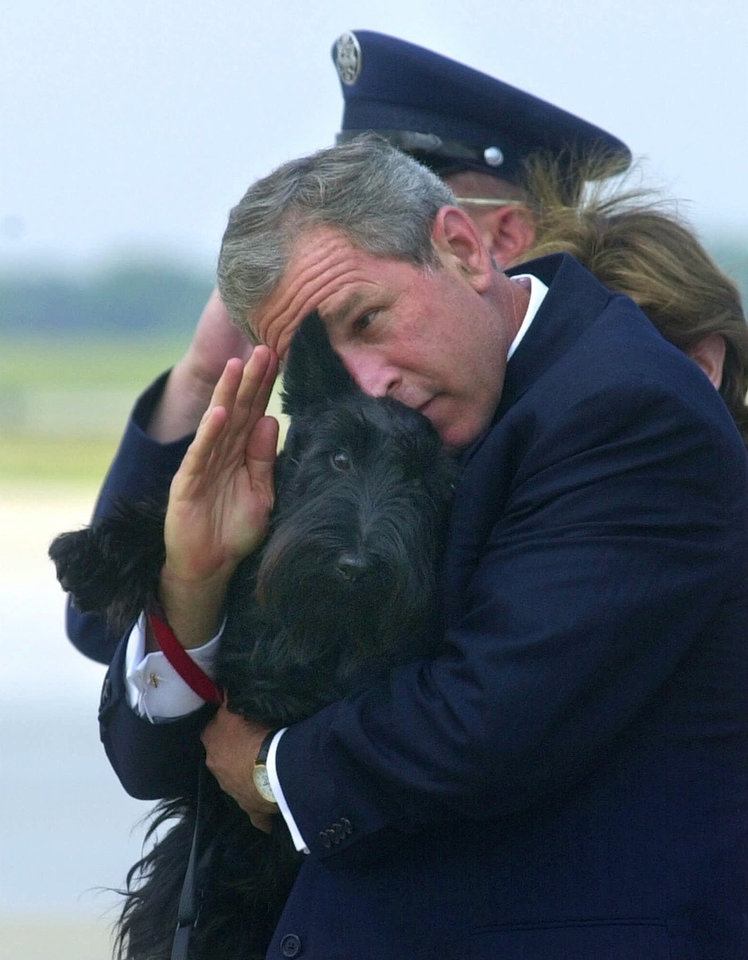 Photo - FILE - In this June 25, 2001 file photo, President Bush does his best to salute while holding his dog Barney as they get off of Air Force One at Andrews Air Force Base, Md. Barney, former White House Scottish Terrier and star of holiday videos shot during President George W. Bush's administration, has died after suffering from cancer. He was 12.  (AP Photo/Susan Walsh, File)