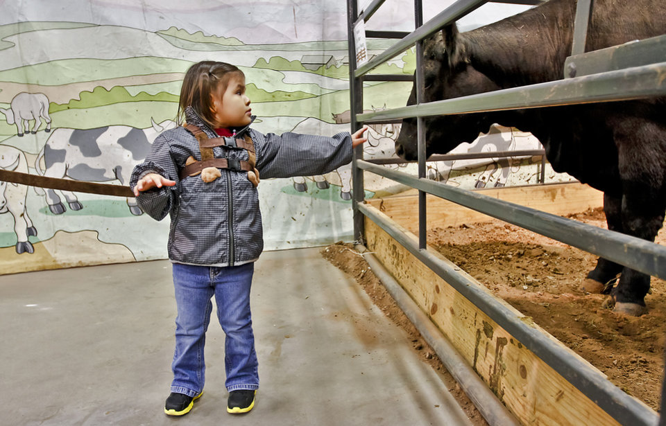 Photo - Riley Waterman, 2, of Oklahoma City, tries to get a little closer to a cow in the AGtropolis venue at the Oklahoma State Fair at State Fair Park on Friday, Sept. 14, 2012, in Oklahoma City, Oklahoma.  Photo by Chris Landsberger, The Oklahoman