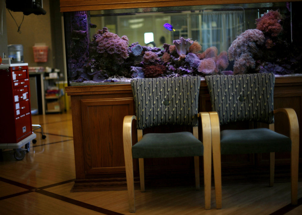 Jim Chastain goes through Chemotherapy at OU Physicians Hospital in Oklahoma City. IN a poem called 'My Cancer Journey Acted Out in a Fish Tank,' Jim compares himself to a fish in this tank that is constantly chased by another fish. By John Clanton, The Oklahoman