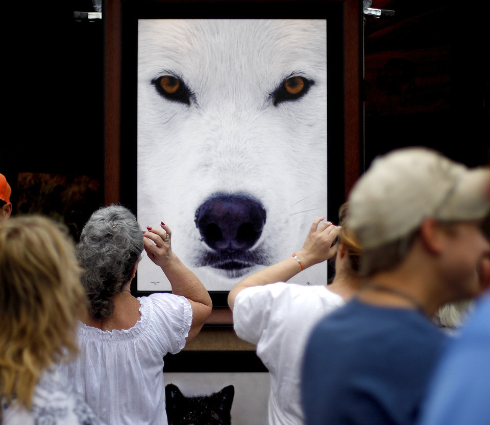 """Photo - A crowd passes by Randy Napier's photo """"Arctic Eyes"""" Saturday. Photo by Bryan Terry, The Oklahoman"""