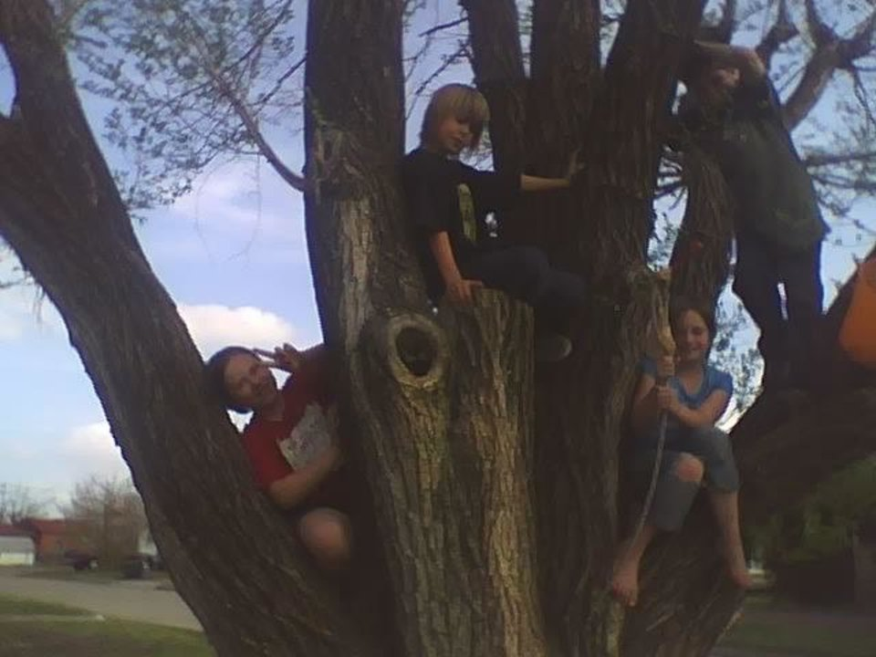 kids in the tree... kash and joe. and friends<br/><b>Community Photo By:</b> Tama<br/><b>Submitted By:</b> Tama, Midwest