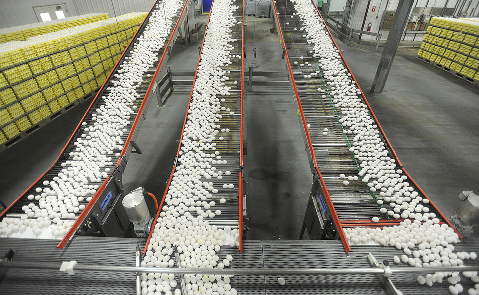 Photo - FILE - In this July 28, 2012 file photo, chicken eggs are transported by conveyor belt from the production side of Rose Acre Farms Inc. in Cortland, Ind. to the packaging side. Indiana is one of more than a dozen states want the U.S. Supreme Court to block a California law requiring any eggs sold there to come from hens that have space to stretch out in their cages. A lawsuit filed Monday, Dec. 4, 2017 with the high court alleges California's law has cost consumers nationwide up to $350 million annually because of higher egg prices since 2015. (AP Photo/The Tribune, Aaron Piper, File)