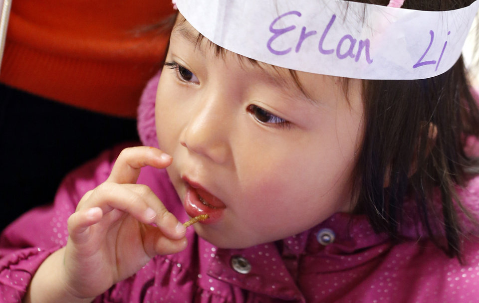 Erlan Li, 3, eats a fried meal worm at Bug Fest, co-sponsored by the library and Oklahoma State University (OSU) Extension Center on Wednesday, March 20, 2013 in Norman, Okla. Photo by Steve Sisney, The Oklahoman