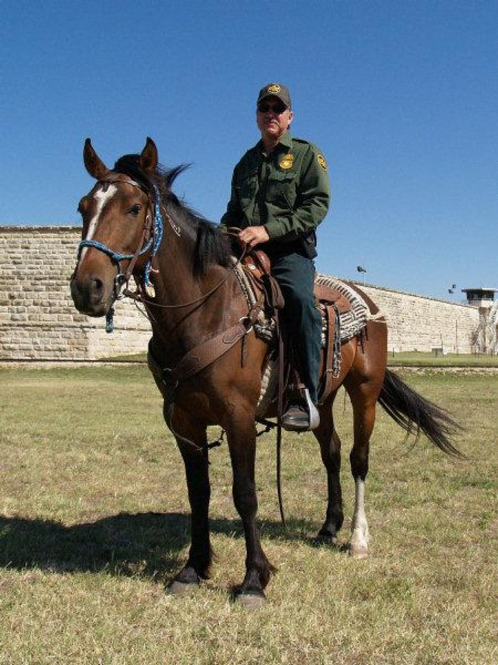 Photo - Border Patrol Agent R. Garcia rides a mustang recently adopted by the U.S. Border Patrol.  PROVIDED PHOTO