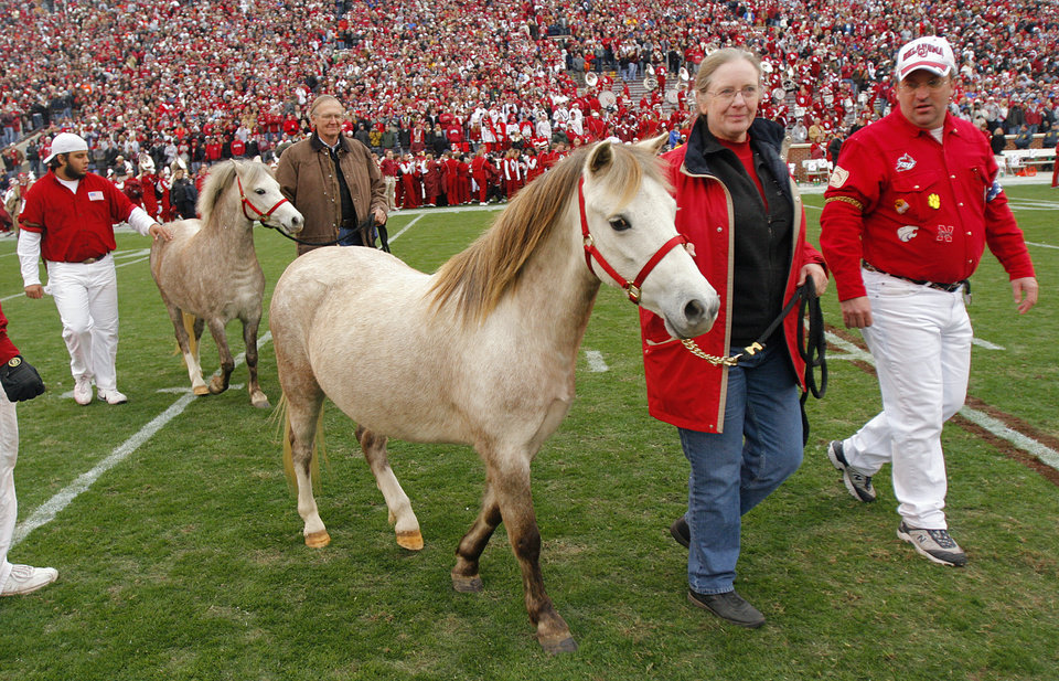 Photo - Boomer and Sooner V are lead onto the filed during a retirement ceremony for Boomer and Sooner IV before the college football game between the University of Oklahoma Sooners (OU) and the Oklahoma State University Cowboys (OSU) at the Gaylord Family-Memorial Stadium on Saturday, Nov. 24, 2007, in Norman, Okla. 