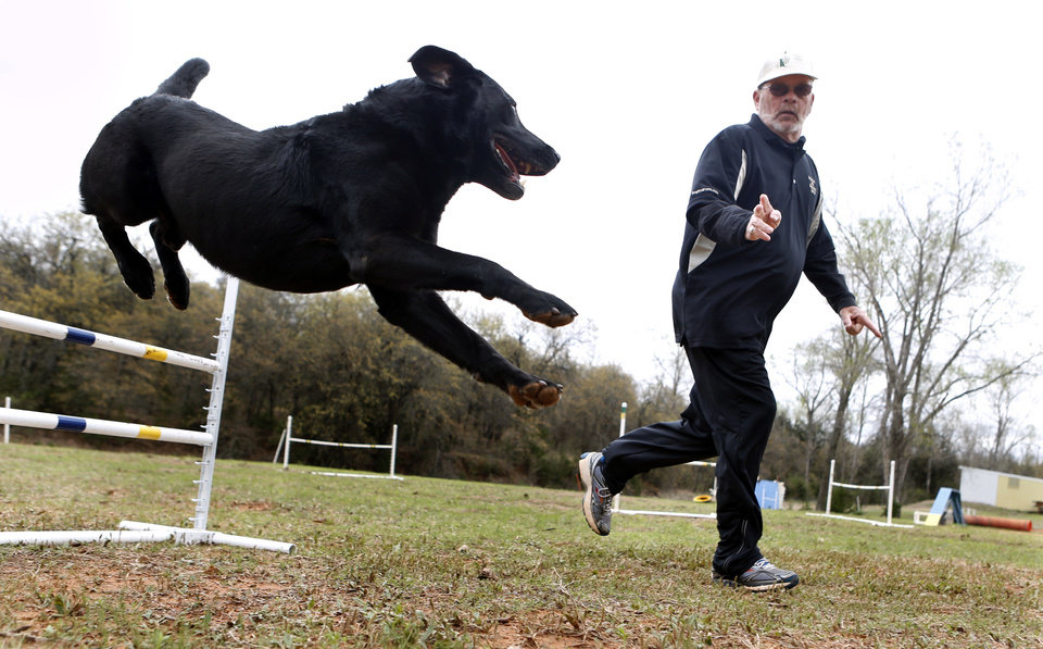 Henry, a black labrador and recent American Kennel Club national champ for agility, works with his owner Dennis Butler on Thursday, April 18, 2013 in Norman, Okla.  Photo by Steve Sisney, The Oklahoman <strong>STEVE SISNEY - THE OKLAHOMAN</strong>