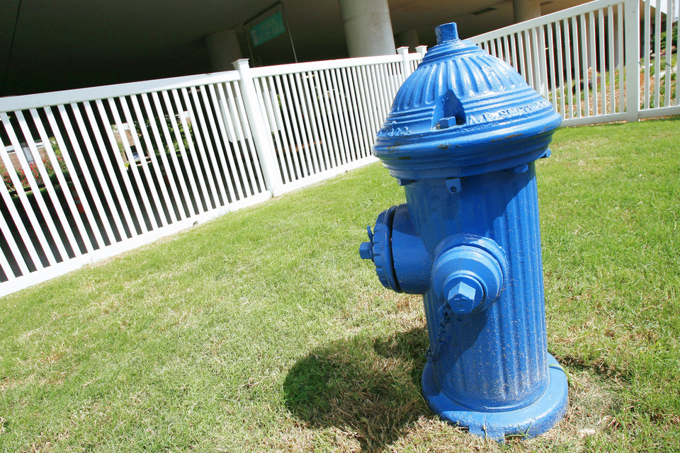 The blue faux fire hydrant is part of a new animal relief area at Will Rogers World Airport. Photo by PAUL B. SOUTHERLAND, the oklahoman