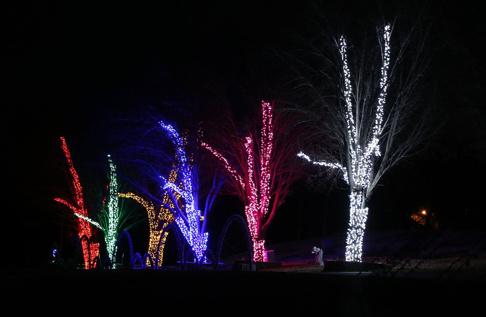 Lighted trees flash in synchronicity to holiday music at the Downs Family Chiristmas Light Ministry in Norman. Photo by Steve Sisney, The Oklahoman <strong>STEVE SISNEY</strong>