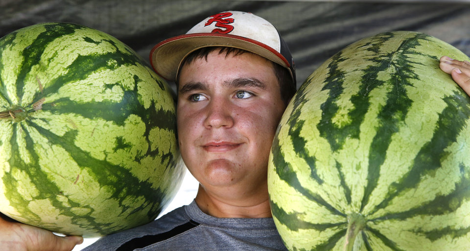 Photo - James Harris holds a pair of Peddler sweet watermelons on his shoulders in the fruit stand operated by James and his dad, Joe Harris, along US 81 on the north end of Rush Springs. Harris estimated the melons weigh at least 40 pounds each. The Harris' are harvesting their melons, along with other farmers in the area, in preparation for the annual watermelon festival in Rush Springs on Aug. 10, 2013.  Photo taken Wednesday, July 24, 2013.  Photo  by Jim Beckel, The Oklahoman.