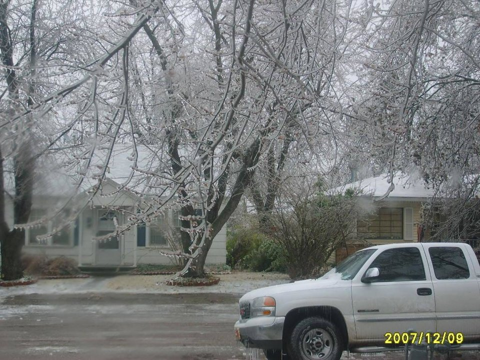The Tree's Are covered with ice,and the ground is slippery.<br/><b>Community Photo By:</b> Casey Gonzales<br/><b>Submitted By:</b> Casey, Bethany