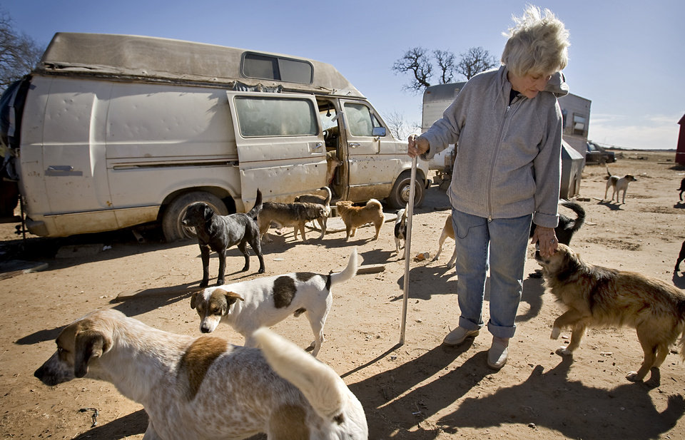Photo - Catherine Titus walks with the 100 plus dogs she care for past the van she calls home on Tuesday, Dec. 30, 2008, in Wilson, Okla. Titus who live out of a broken down van with no running water or electricity spends most all of her monthly $700 Social Security check to care for the dogs she calls her best friends.  Titus makes sure the dogs are fed twice a day, and are also given dog treats as a little something extra.