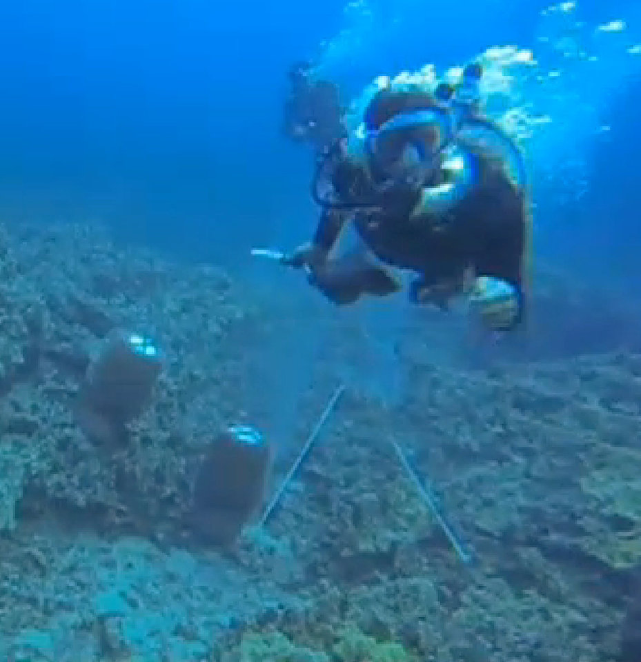 Photo - File-This undated file video frame grab shows a scuba diver swimming toward activist Rene Umberger moments before ripping her air supply regulator out of her mouth near Kona, Hawaii, from a video released by Umberger.  The underwater scuffle is highlighting a long-running dispute pitting environmentalists who want to shut down the industry in Hawaii and collectors who gather aquarium fish and sell them for a living. (AP Photo/Rene Umberger, File)