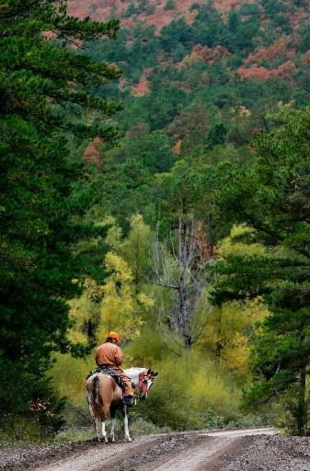Photo -  A searcher on horseback rests his horse as they search on the mountain. Law enforcement officers and volunteers converged in the small southeast Oklahoma community of Red Oak on Friday, Oct. 23, 2009, to search a heavily wooded area in the Sansbois Mountains for a missing family of three. Searches on horseback, on foot, on ATVs and in airplanes and helicopters scoured the area for any traces of the family. Oct. 21, 2009. Photo by Jim Beckel