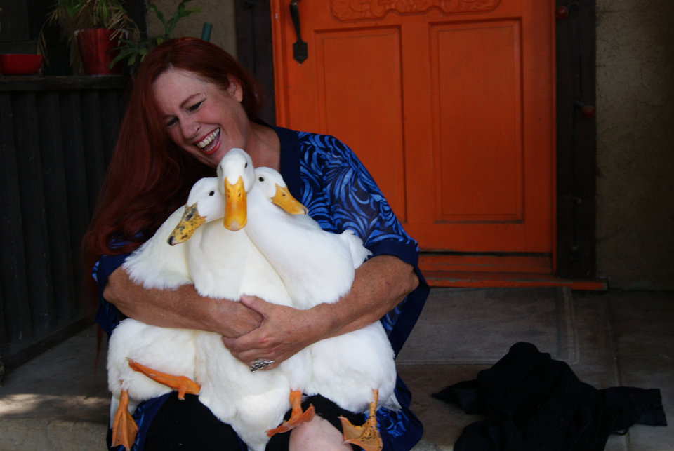 Photo - In this July 22, 2012 photo provided by Lydia Yasuda, Carol Chrysong founder of The Lucky Duck Rescue & Sanctuary in Los Angeles holds pekin ducks at the sanctuary in Sun Valley, Calif. If a parent has a child who really wants a duck, visit a shelter or zoo and watch the ducks, Chrysong advised. Parents have to remember that ducks live 20 years and more, and it's unlikely the child can take the duck to college. (AP Photo/Lydia Yasuda)
