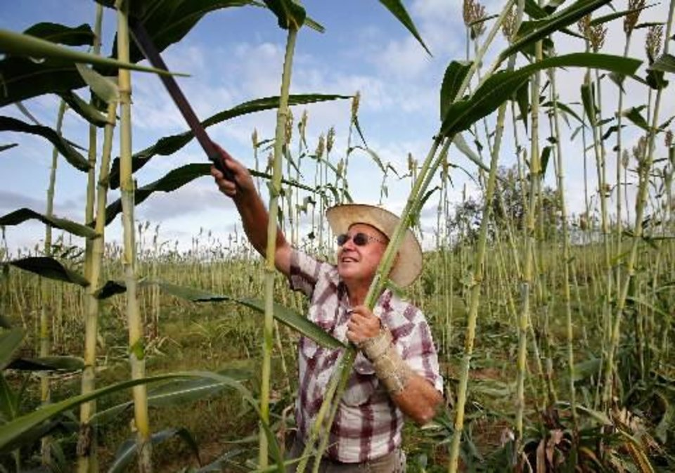 Photo -  Dan Houser harvests sorghum for the 2010 Sorghum Day Festival. Photo by Jim Beckel, The Oklahoman Archives