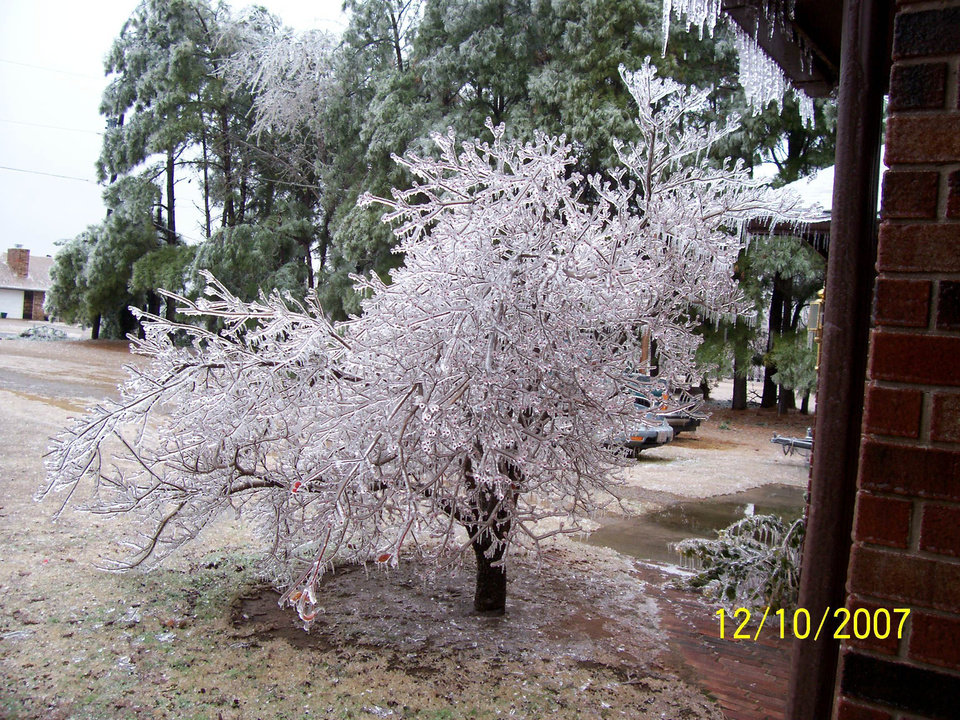 Ice tree anyone?<br/><b>Community Photo By:</b> Lyndsey<br/><b>Submitted By:</b> Lyndsey, Choctaw