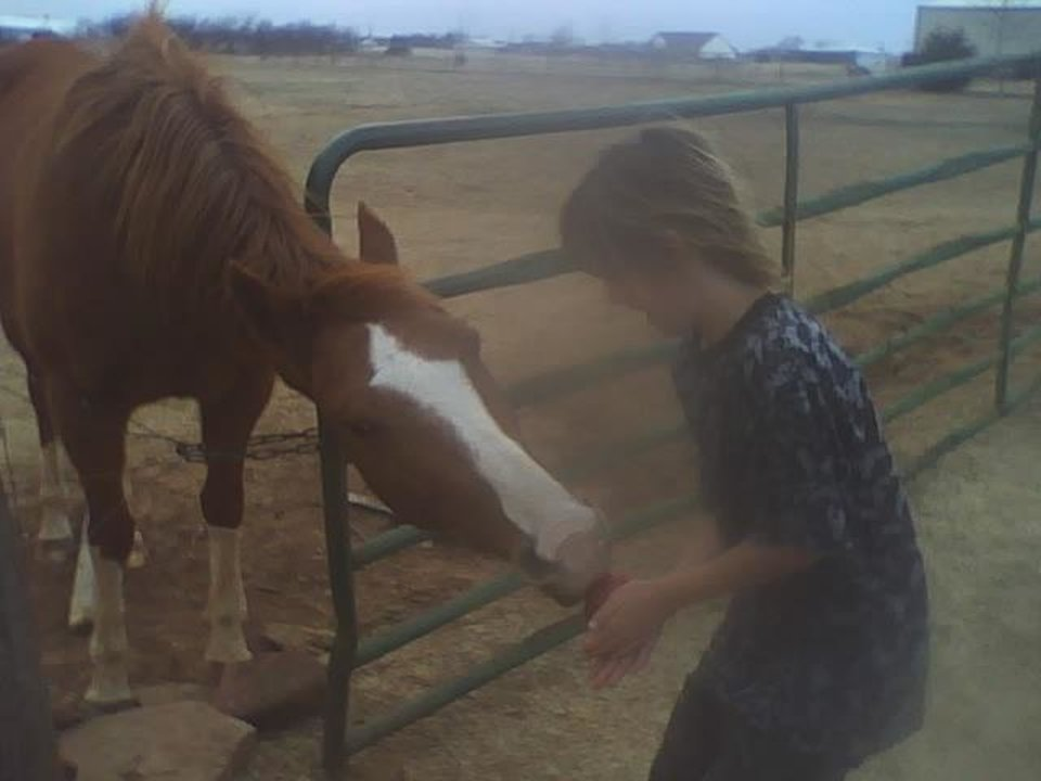 horse,kash and apple<br/><b>Community Photo By:</b> tama<br/><b>Submitted By:</b> Tama, Midwest
