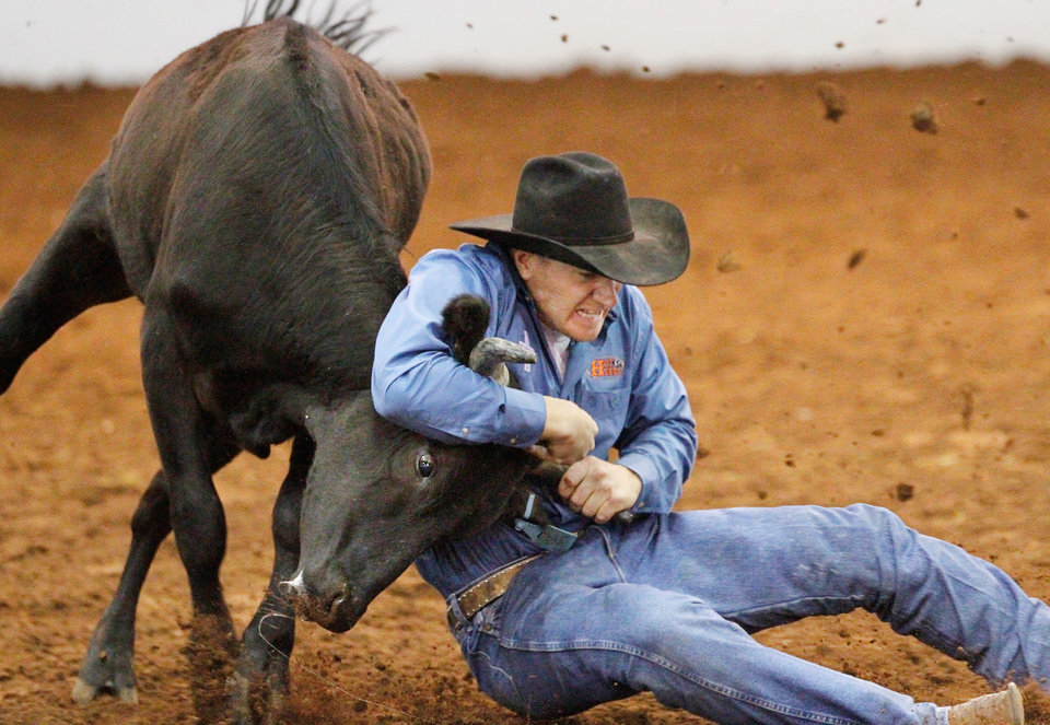 This steer puts up a short fight before Jess Tierney manhandles it to the dirt during the steer wrestling competition at the Timed Event Championship inside the Lazy E Arena in Guthrie on Saturday,  March 3,  2012.    Photo by Jim Beckel, The Oklahoman