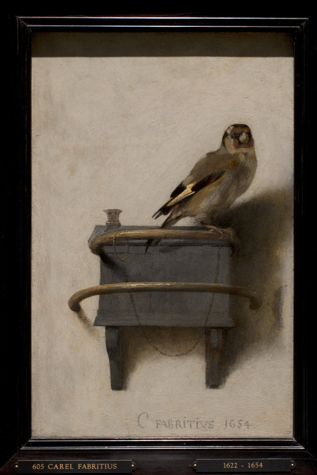 Photo - This reproduction shows Carel Fabritius' The Goldfinch (painted in 1654) at the renovated Mauritshuis museum during a preview for the press in The Hague, Netherlands, Friday, June 20, 2014. The Mauritshuis reopens after a two-year renovation that allowed its masterpieces, including Vermeer's The Girl with the Pearl Earring to be seen by record-setting crowds abroad. The public will have access for free from 8 pm till midnight on Friday June 27th after the official ceremonial opening and from June 28 onwards the museum will revert to regular opening hours. (AP Photo/Peter Dejong)