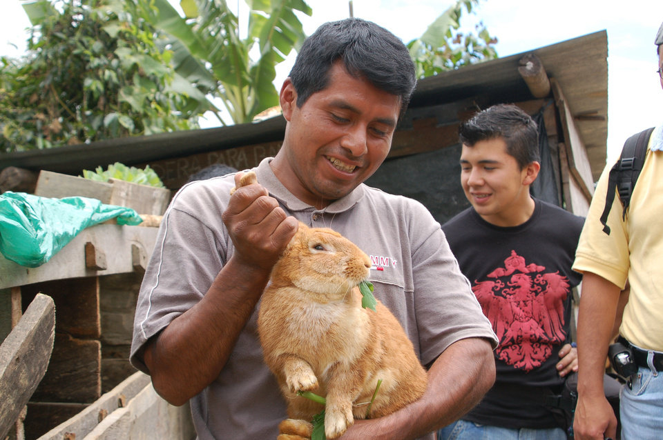 Guatemalan men examine a rabbit, likely an eastern cottontail, in this World Neighbors photo. The group's efforts in this Central American nation include promoting environmentally friendly production of coffee beans and developing holistic agricultural practices. <strong> - World Neighbors</strong>