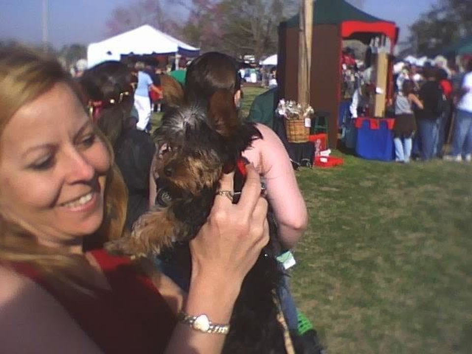 this is peanut I met at the MID evil fair. cute as cute gets.<br/><b>Community Photo By:</b> JOe<br/><b>Submitted By:</b> Tama, Midwest