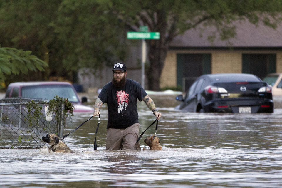 Photo - A man walks through flood waters in Austin, Texas on Quicksilver Boulevard with two dogs after heavy rains brought  flooding to the area in southeast Austin, Texas, on Thursday, Oct. 31, 2013. Heavy overnight rains brought flooding to the area. The National Weather Service said more than a foot of rain fell in Central Texas, including up to 14 inches in Wimberley, since rainstorms began Wednesday.  (AP Photo/The Austin American-Statesman, Deborah Cannon) AUSTIN CHRONICLE OUT, COMMUNITY IMPACT OUT, INTERNET MUST CREDIT PHOTOGRAPHER AND STATESMAN.COM, NO SALES
