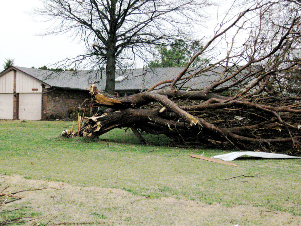 Photo - Tree uprooted in Edmond. PHOTO BY JOHN A. WILLIAMS, THE OKLAHOMAN